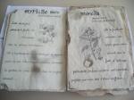 Herbiers thématiques -  Maromme (16)